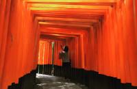 京都旅行3 三十三間堂・伏見稲荷