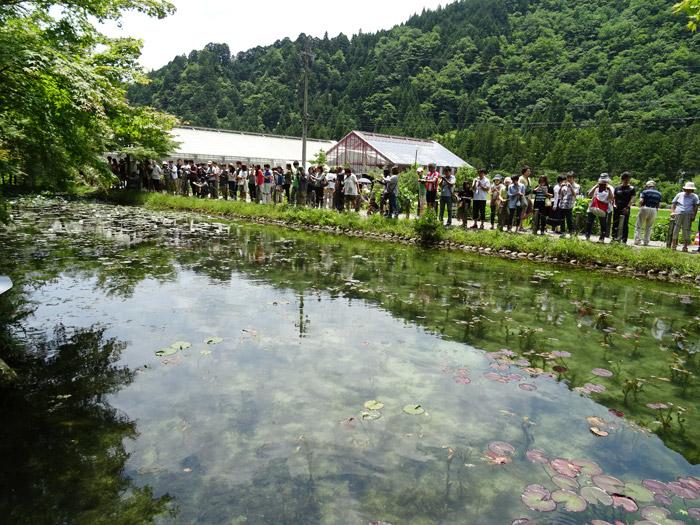 根道神社 モネの池