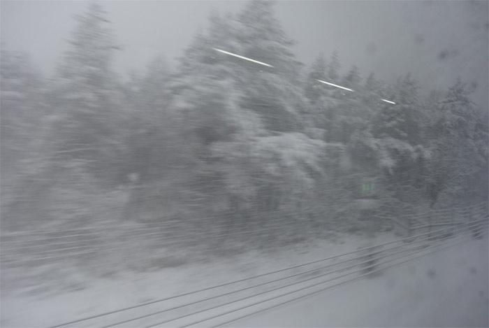 北海道旅行 その2