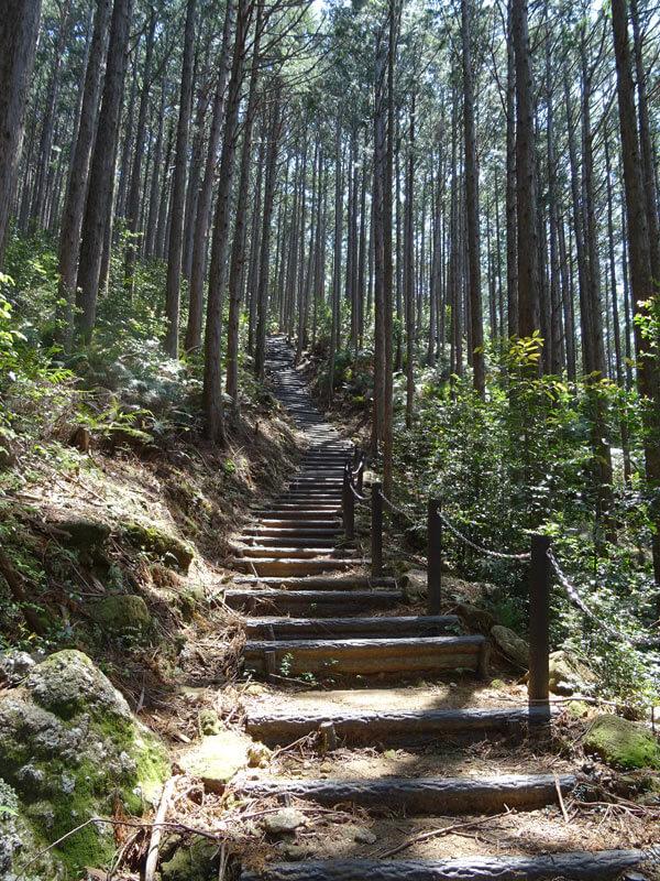 便石山 像の背 登山