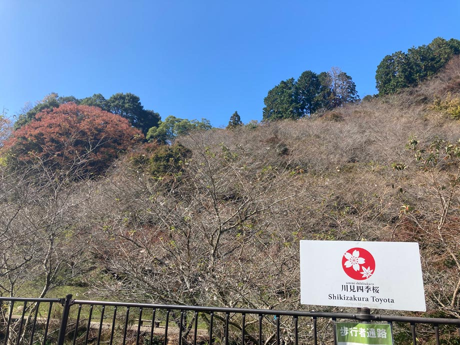 稲武道の駅ツーリング